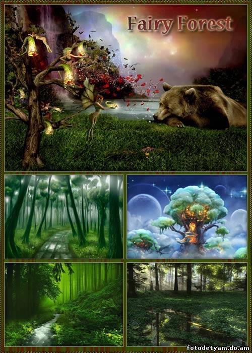 Жизни magic box фотографии фонов сказочный лес фото Задний план ... | 700x500